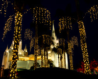 Temple Lights San Diego